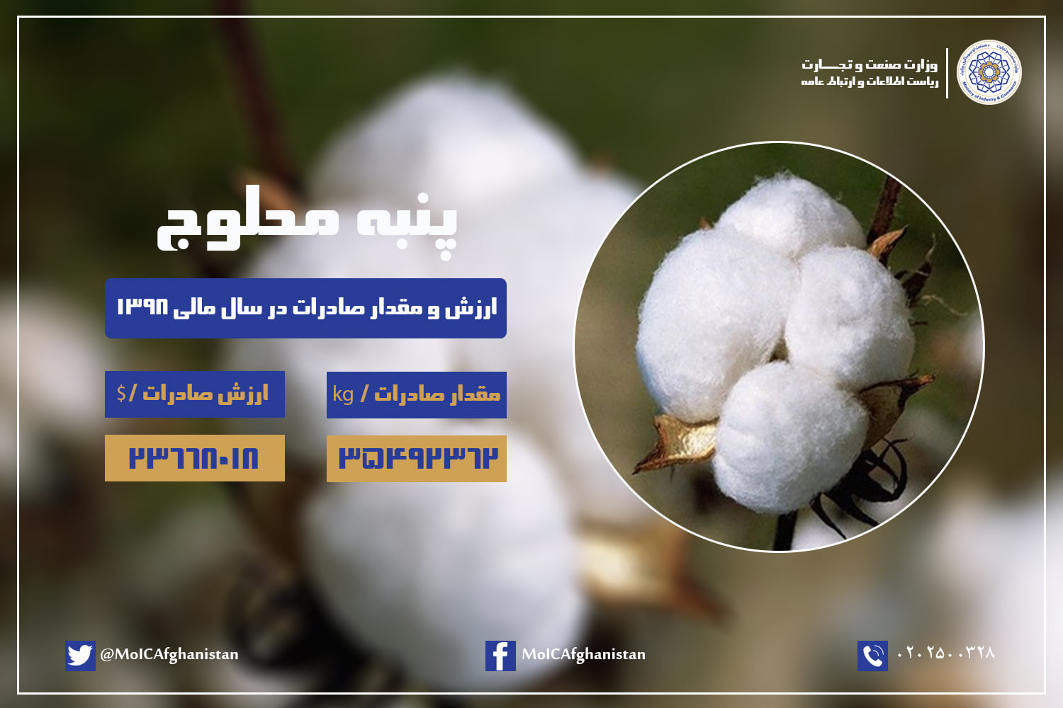 Value and Amount of Cotton exports in the fiscal year 1398